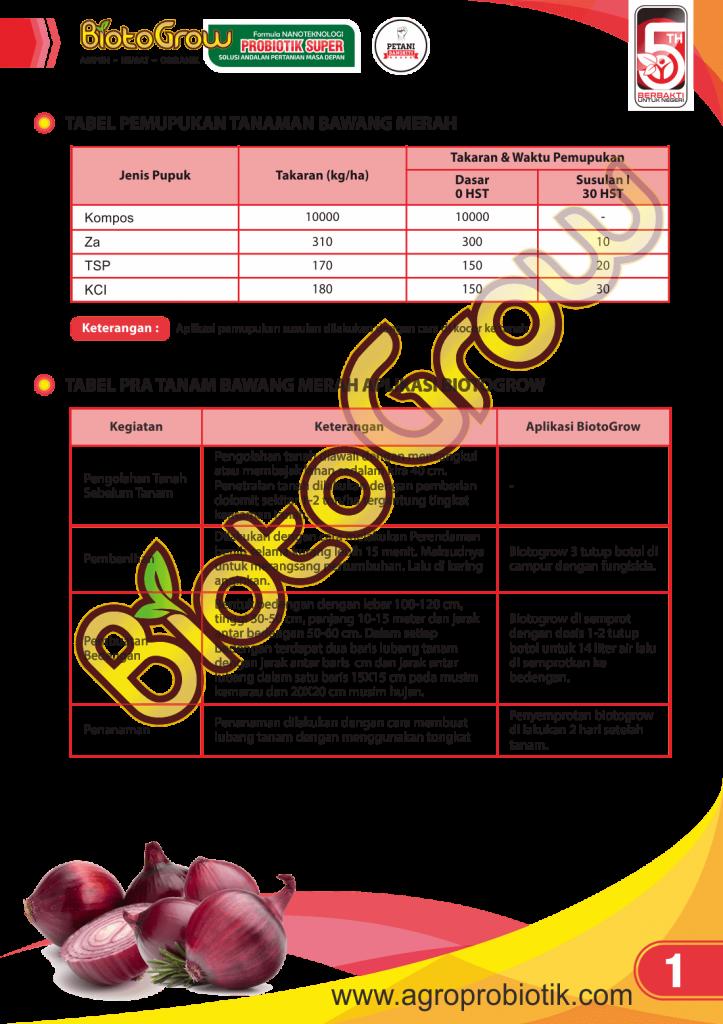Tabel Pemupukan Tanaman Bawang Merah