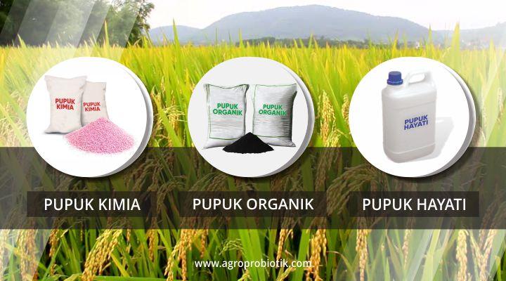 perbedaan pupuk organik dan pupuk hayati